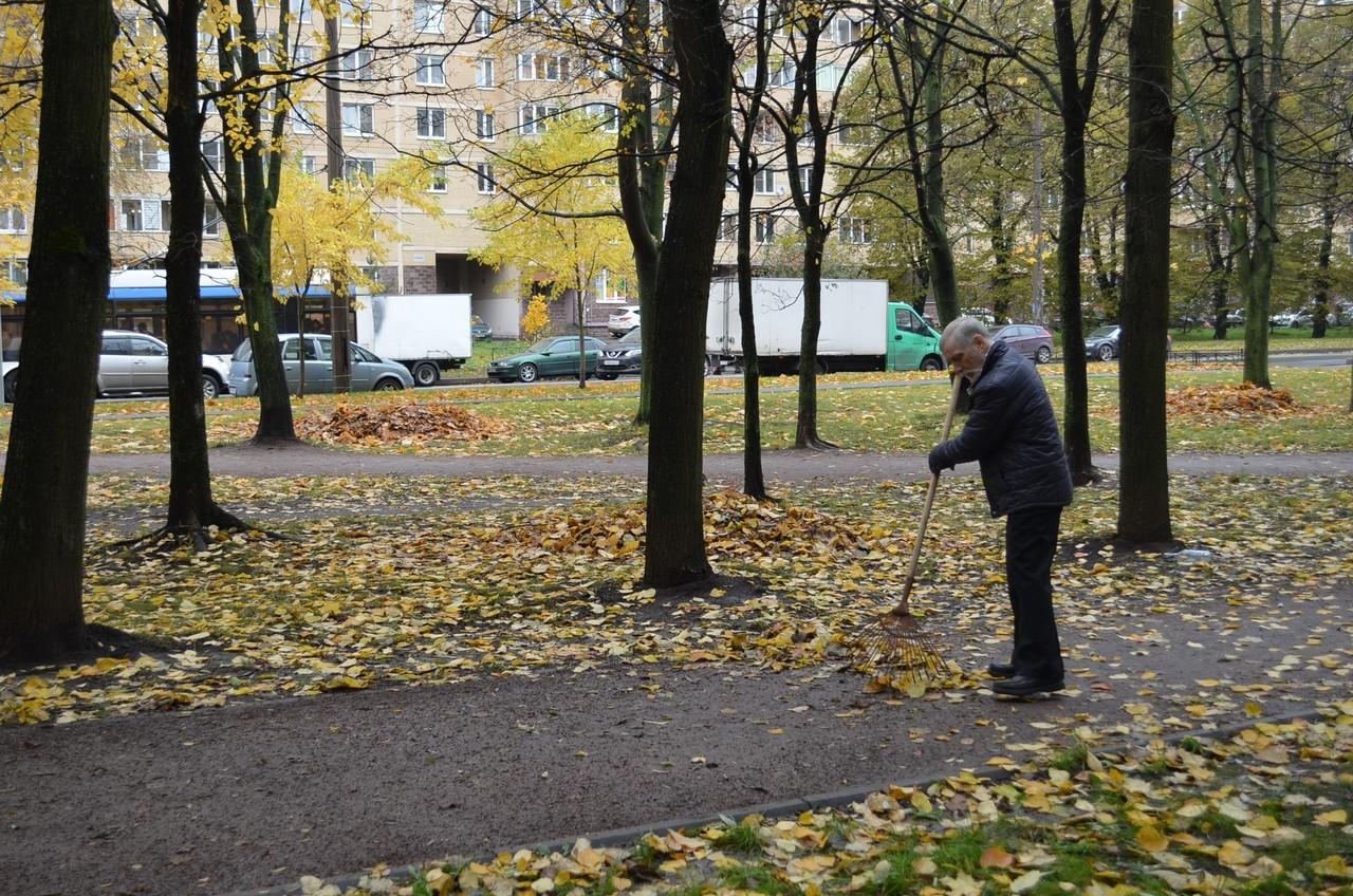 День благоустройства города Санкт-Петербурга